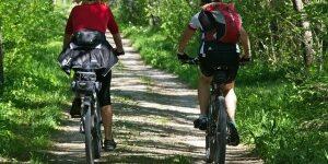Radfahrer auf Waldweg
