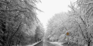 winterliche Strasse durch Wald